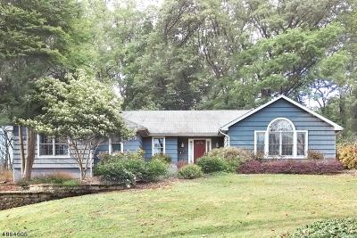 Bernards Twp., Bernardsville Boro Single Family Home For Sale: 167 Spencer Rd