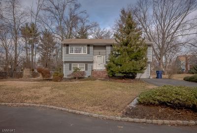 Fanwood Boro Single Family Home For Sale: 4 Cecilia Pl