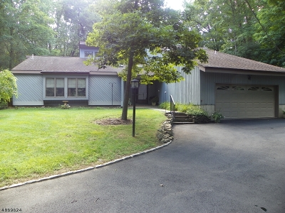 Boonton Twp. Single Family Home For Sale: 185 Powerville Rd