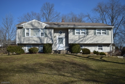 Parsippany Single Family Home For Sale: 9 Iron Forge Rd