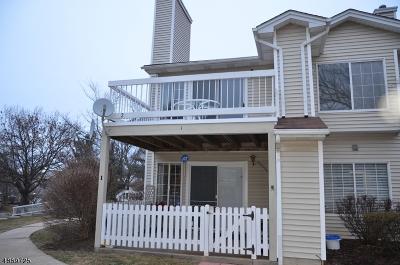 Bedminster Twp., Bridgewater Twp., Bernards Twp., Raritan Boro Rental For Rent: 2 Sage Ct #2