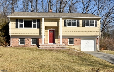 Denville Twp. Single Family Home For Sale: 8 Holly Dr