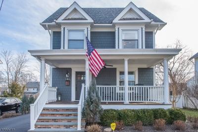 Chatham Boro Single Family Home For Sale: 30 N Hillside Ave