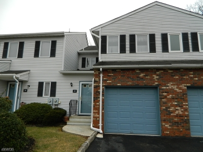 Hunterdon County Condo/Townhouse For Sale: 35 Coppermine Vlg