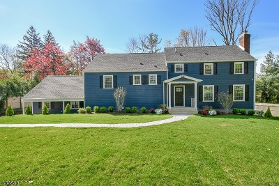 Summit Single Family Home For Sale: 288 Ashland Rd