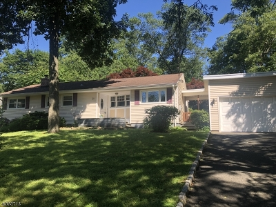 New Providence Single Family Home For Sale: 31 Mountain Ave