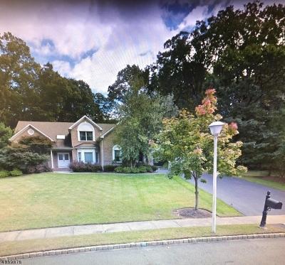 Denville Twp. Single Family Home For Sale: 3 Leslie Ann Ct