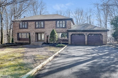 Randolph Twp. Single Family Home For Sale: 8 Trowbridge Dr