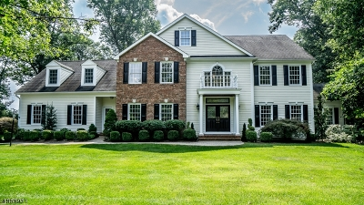 Mendham Twp. NJ Single Family Home For Sale: $1,345,000