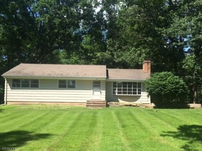 Branchburg Twp. Single Family Home For Sale: 86 Bernard St