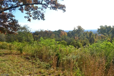 Bridgewater Twp. Residential Lots & Land For Sale: 1856 Mountain Top Rd