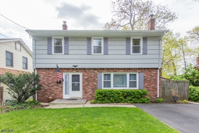 Denville Twp. Single Family Home For Sale: 8 Shawnee Trail