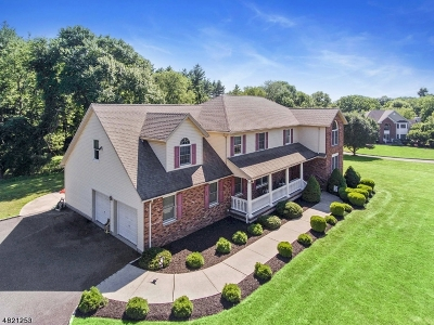 Readington Twp. Single Family Home For Sale: 5 Brearley Ln
