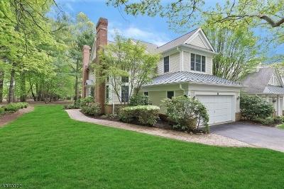 Far Hills Boro NJ Condo/Townhouse For Sale: $799,000