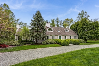 Harding Twp. NJ Single Family Home For Sale: $1,095,000