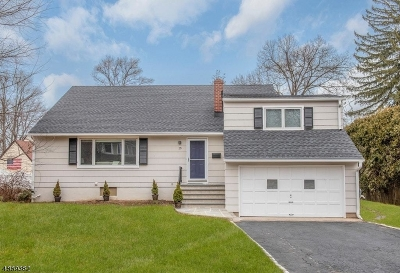 Madison Single Family Home For Sale: 25 Beech Ave