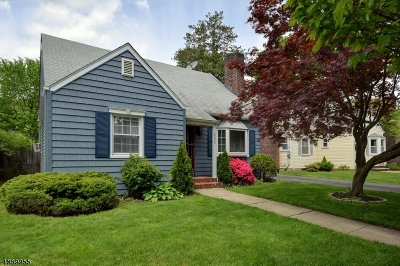Scotch Plains Twp. Single Family Home For Sale: 2425 Mountain Ave
