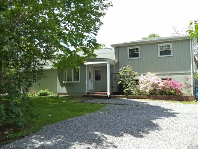 Readington Twp. Single Family Home For Sale: 1015 Route 523 South