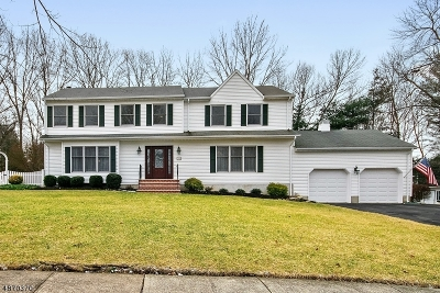 Roxbury Twp. Single Family Home For Sale: 17 Sara Lane