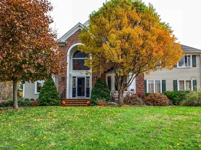 Franklin Twp. Single Family Home For Sale: 74 Sidney School Rd