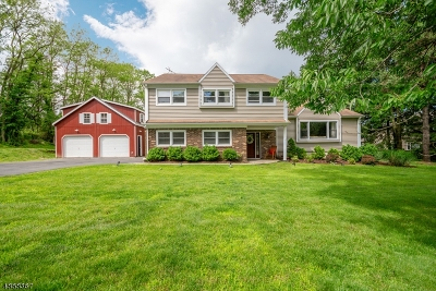 Mendham Boro NJ Single Family Home For Sale: $729,000