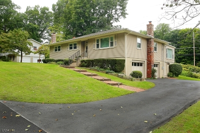 Morris Plains Boro Single Family Home For Sale: 12 Drake Way