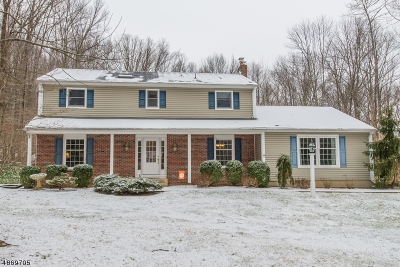 Chester Twp. NJ Single Family Home For Sale: $575,000