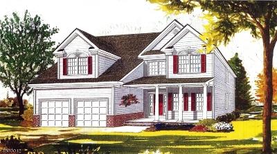 Morris Twp. Single Family Home For Sale: 282 Mt Kemble Ave