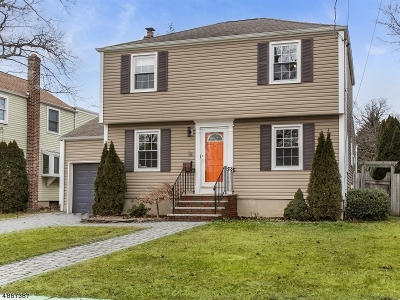 Bloomfield Twp. Single Family Home For Sale: 34 N End Ter