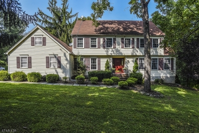 Long Valley Single Family Home For Sale: 10 Cider Mill Ln