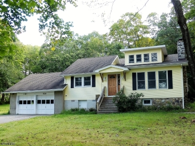 Boonton Twp. Single Family Home For Sale: 528 Powerville Rd