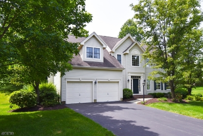 Montgomery Twp. Single Family Home For Sale: 3 Southern Hills Dr