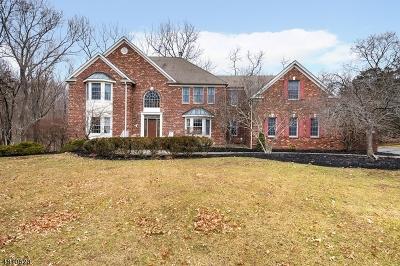 Clinton Twp. Single Family Home For Sale: 18 Oakridge Rd