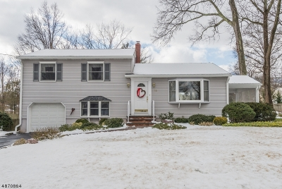Single Family Home For Sale: 12 Crescent Dr