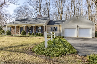 Montgomery Twp. Single Family Home For Sale: 297 Dutchtown-Zion Rd