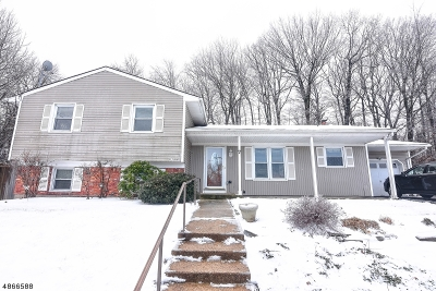 Rockaway Twp. Single Family Home For Sale: 7 Doreen Court