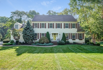 Chester Twp. NJ Single Family Home For Sale: $769,000