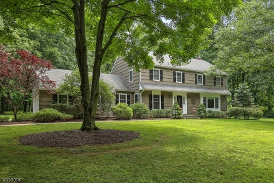 Bernardsville Boro Single Family Home For Sale: 189 Anderson Hill Rd