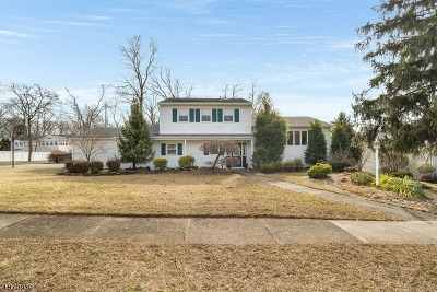 Passaic County Single Family Home For Sale: 54 Braemar Dr