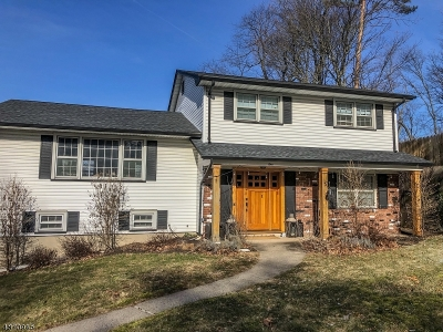 Springfield Twp. Single Family Home For Sale: 1 Outlook Way