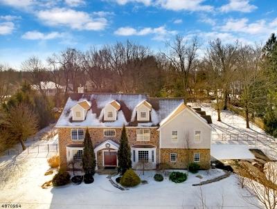Bernards Twp., Bernardsville Boro Single Family Home For Sale: 30 Elizabeth St