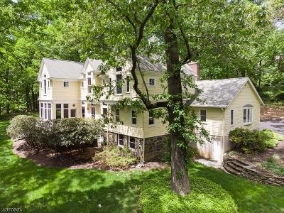 Morristown Town, Morris Twp. Single Family Home For Sale: 11 Egbert Ave