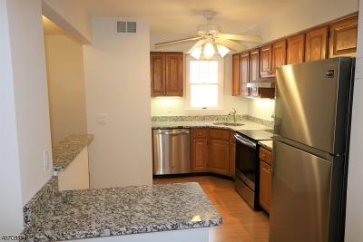 Bedminster Twp., Bridgewater Twp., Bernards Twp., Raritan Boro Rental For Rent: 141 Alexandria Way