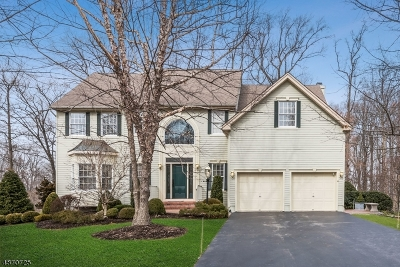 Montgomery Twp. Single Family Home For Sale: 4 Jupiter Hills Ct