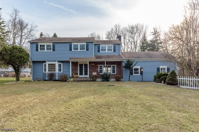 Clinton Twp. Single Family Home For Sale: 3 Stone Meadow Rd