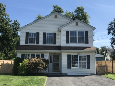 Bound Brook Boro Single Family Home For Sale: 522 Washington St