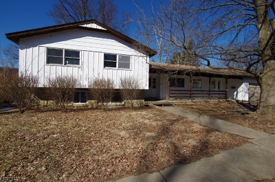 Warren County Single Family Home For Sale: 506 Grand Ave