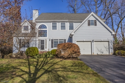 Morris County, Somerset County Rental For Rent: 4 Interlacken Ct
