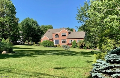 Morris County Single Family Home For Sale: 354 Naughright Rd