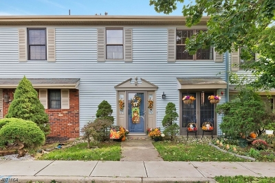 Franklin Twp. NJ Condo/Townhouse For Sale: $255,000